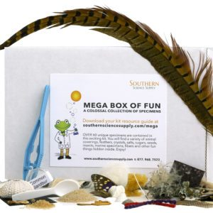 Mega Specimen Observation Kit