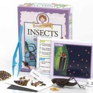Incredible Insects: See What the Buzz is all About