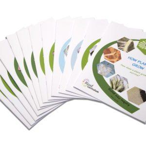 Real Curriculum Books – Set of 12 Activity Books